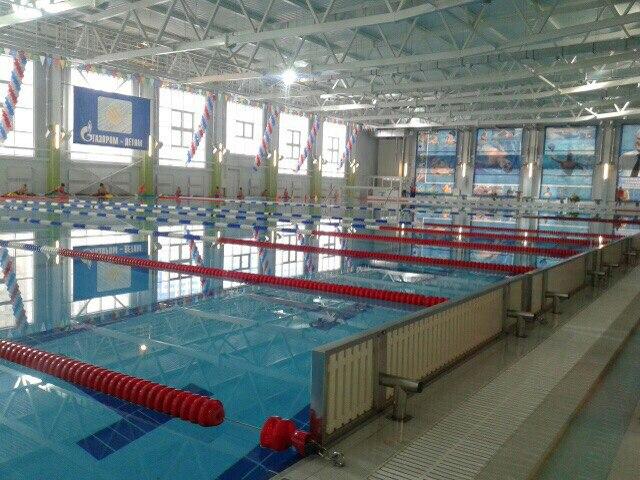 ВСпутнике М. Бабич откроет Дворец водных видов спорта «Дельфин»