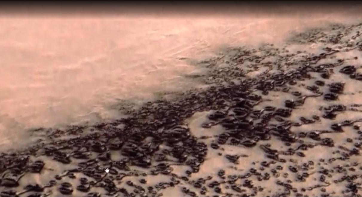 Сенсация внаучном мире: наМарсе отыскали поселение сполумиллионным населением