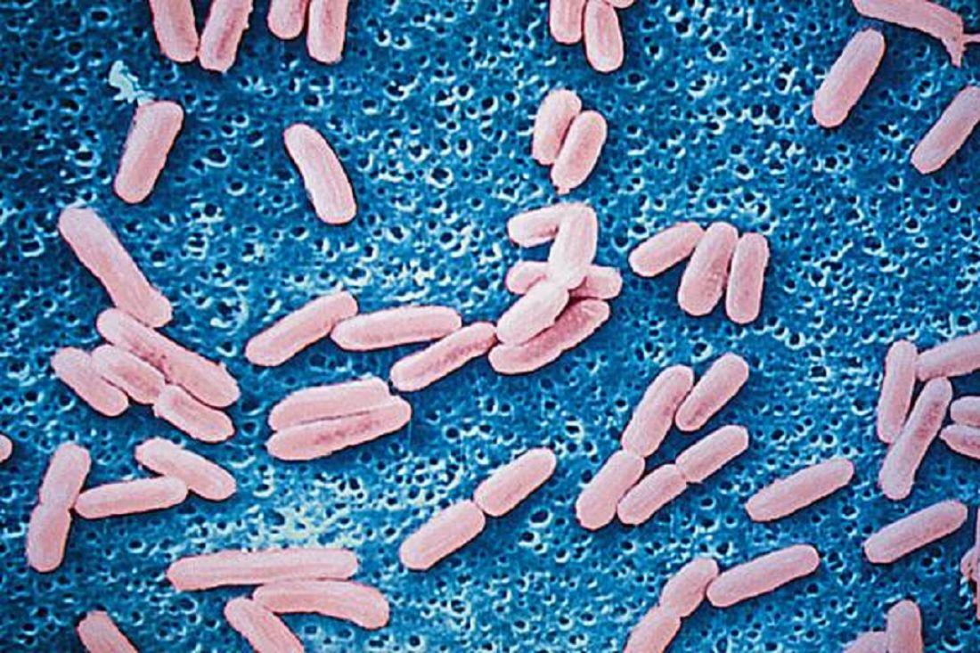 Вшколе №59 провели дезинфекцию после вспышки вирусного заболевания