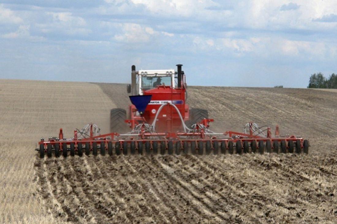 Украина. Ранними яровыми зерновыми засеяно 98% планируемых площадей