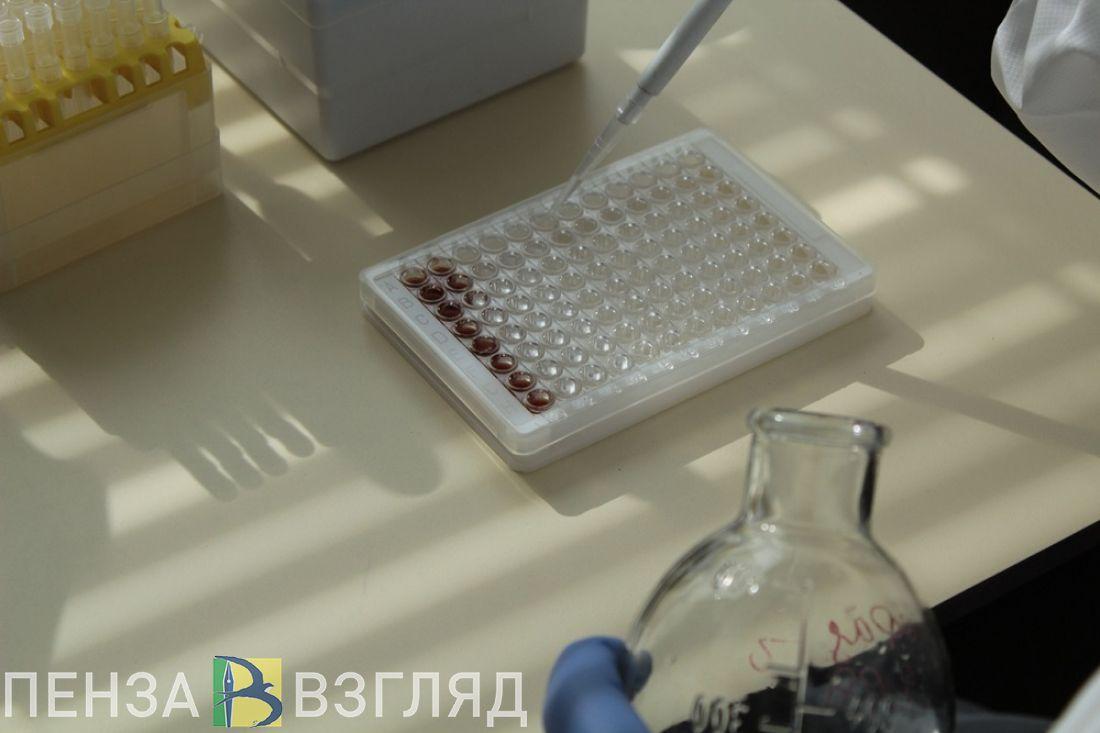 В Пензенской области упал суточный показатель тестирования на ковид