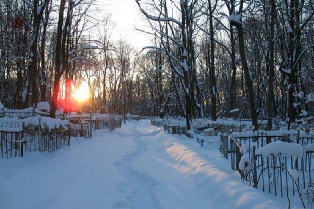 ВПензе наНово-Западном кладбище отыскали мертвую пенсионерку