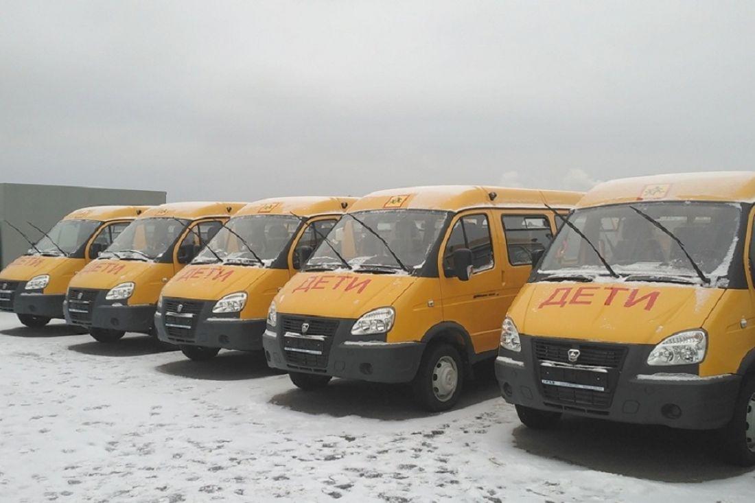 ВПензе иобласти детей вшколы будут отвозить новые «ГАЗели»