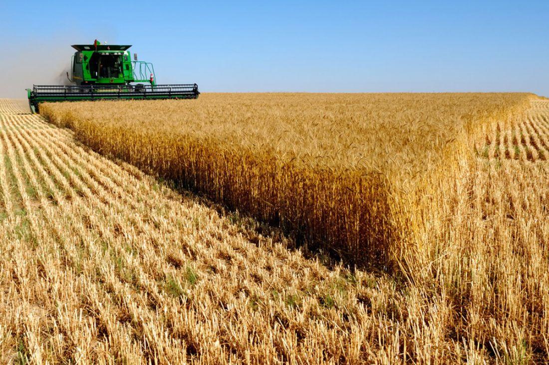 Сполей Пензенской области убрано свыше 80 процентов урожая