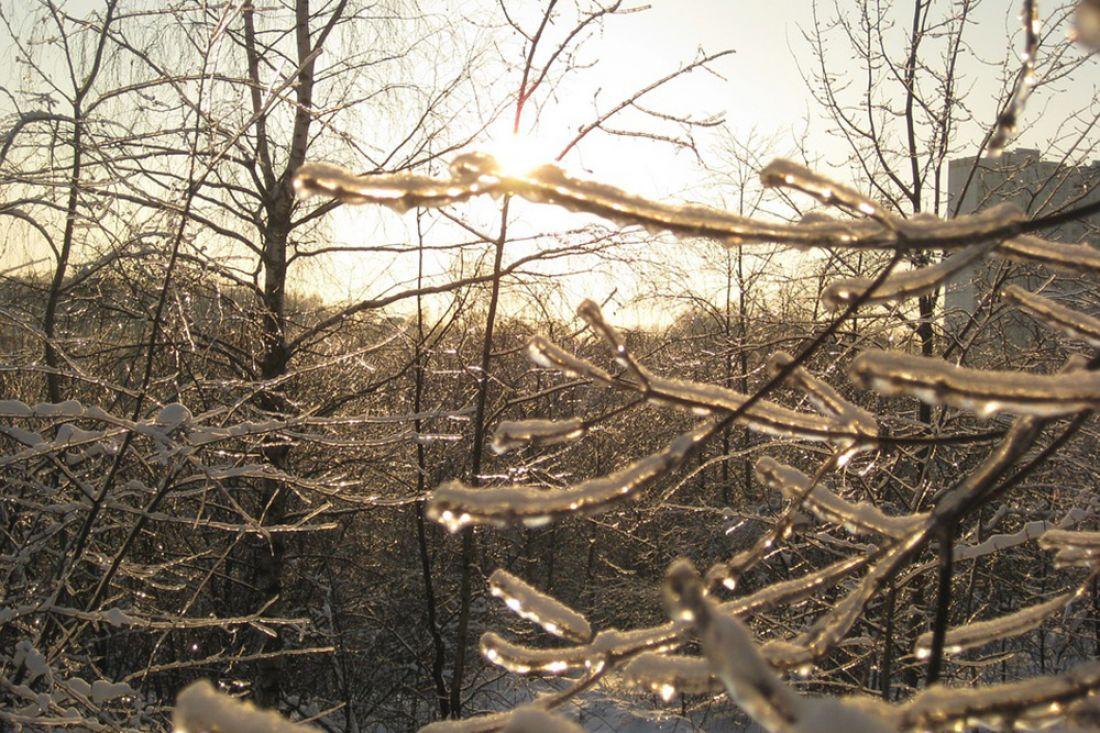 Неменее 730 домов вПензенской области остаются без электроснабжения из-за ледяного дождя