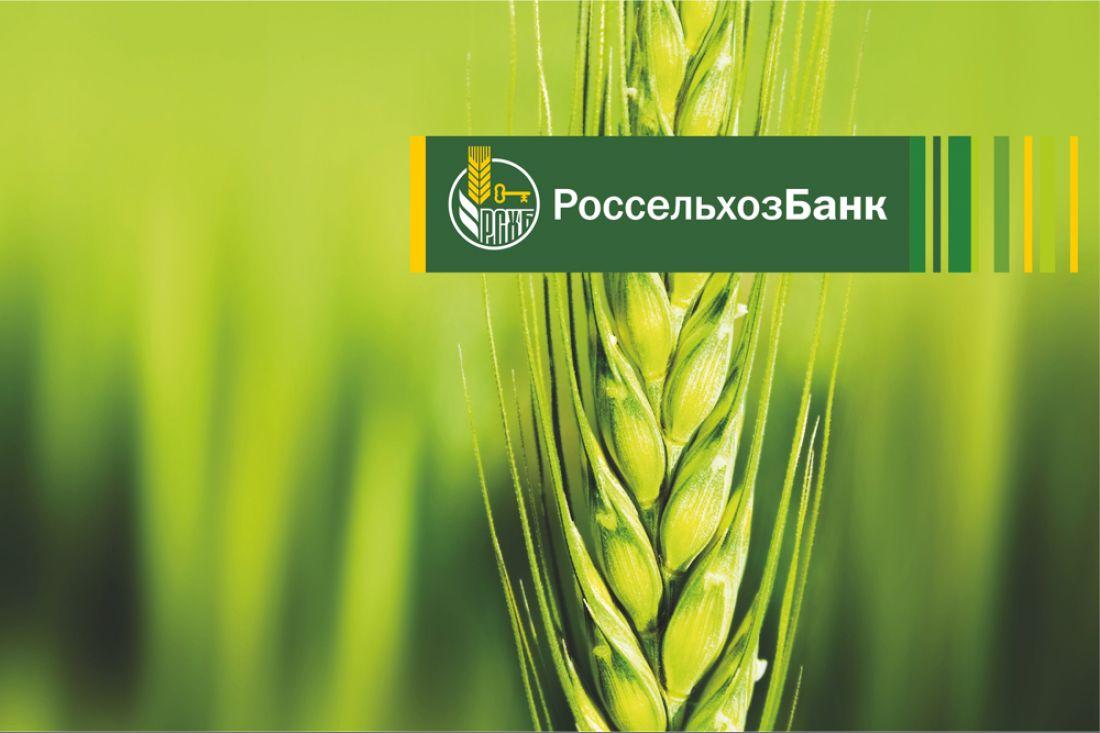 Напроведение весенне-полевых работ Россельхозбанк предоставил неменее  80 млрд руб.  займов