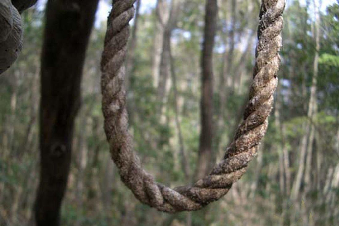 Пропавший без вести пензенец найден мертвым варбековской лесополосе
