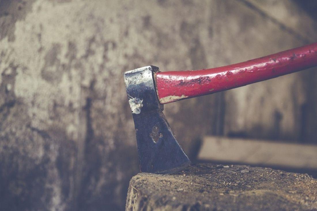Пензенец забил досмерти тесаком  своего собутыльника изакопал