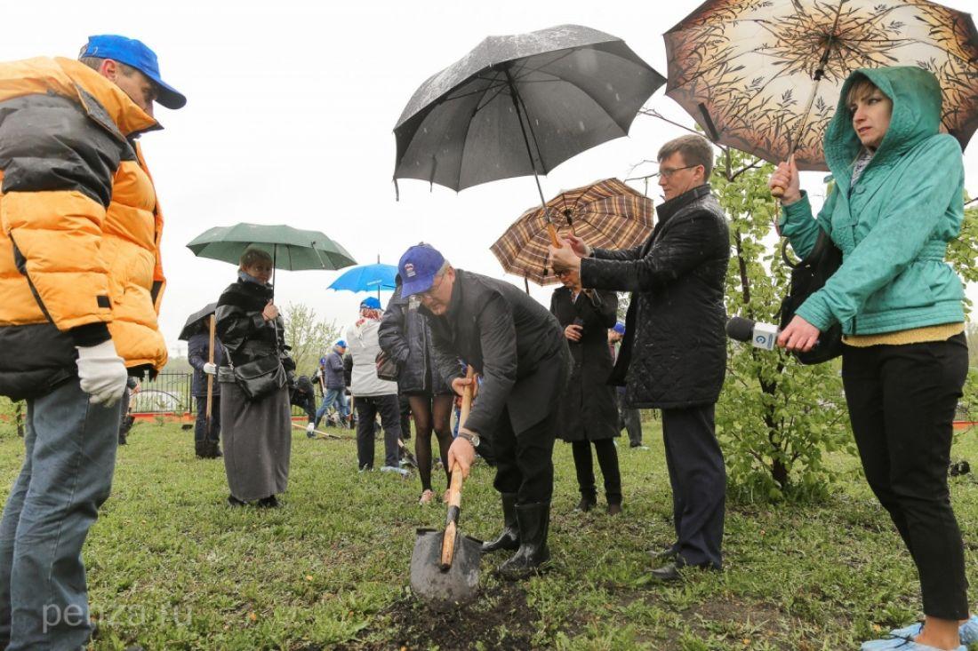 Иван Белозерцев посадил деревья наАллее Победы вПензе