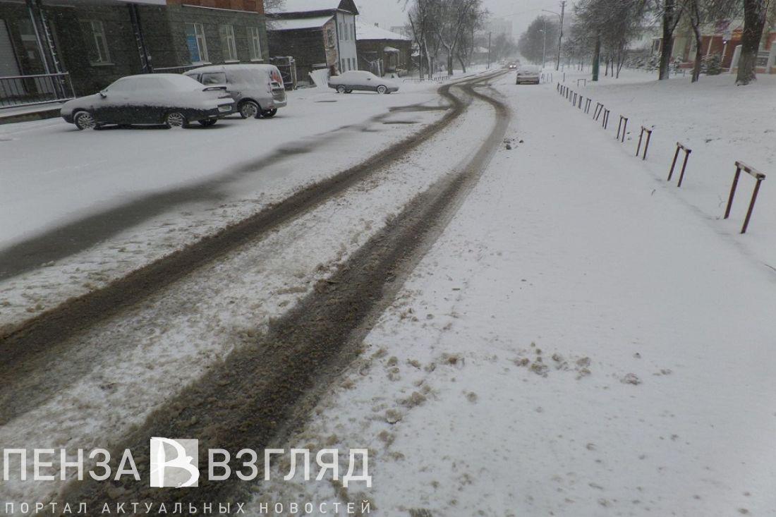 ВПензе из-за заснеженных улиц перенесли общегородской субботник