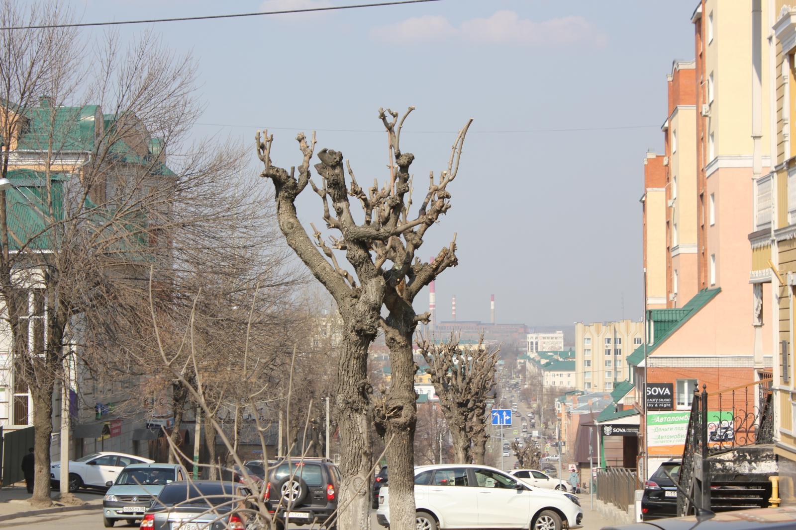 400 ТЦ в России работают без разрешения