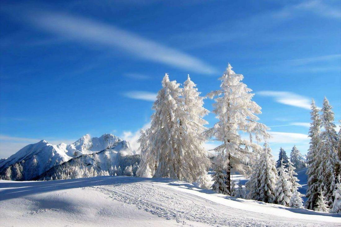 США предвещают Российской Федерации суровую зиму