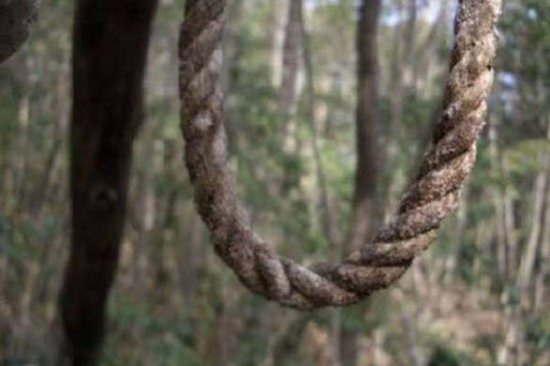 Впензенском лесу отыскали  повешенного пенсионера