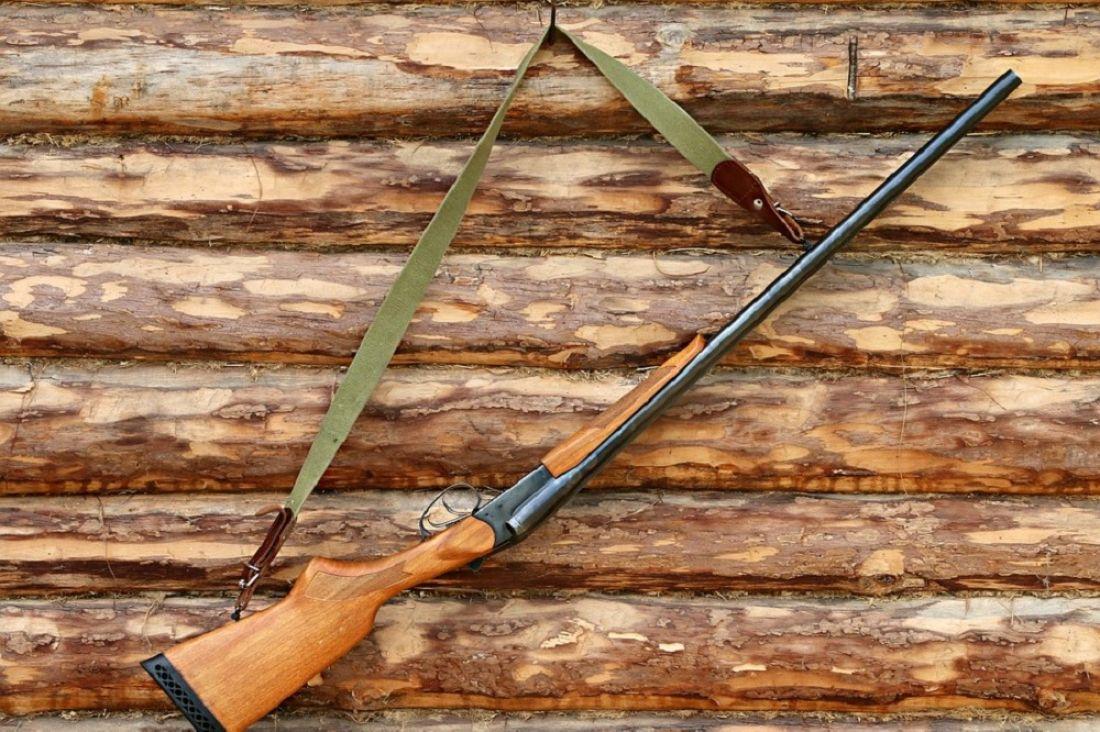 ВПензенской области убийство 2-х лосей обойдется браконьеру в 300 тысяч руб.