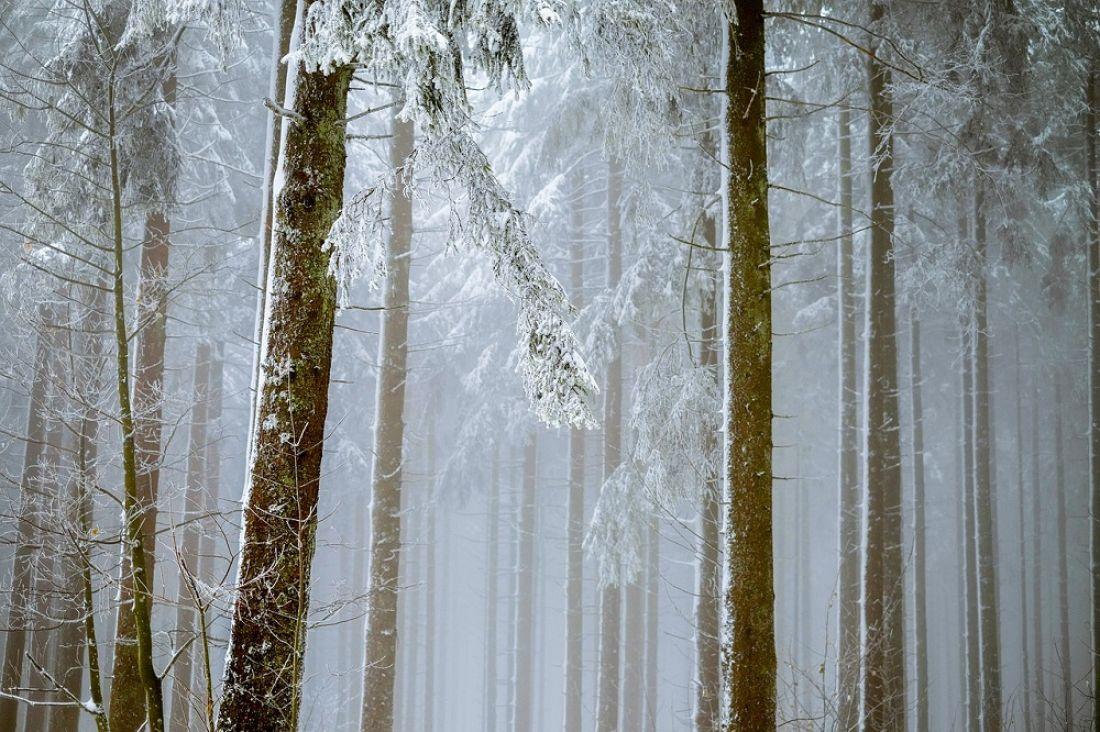 Всубботу пообласти предполагается порывистый ветер, снег игололедица