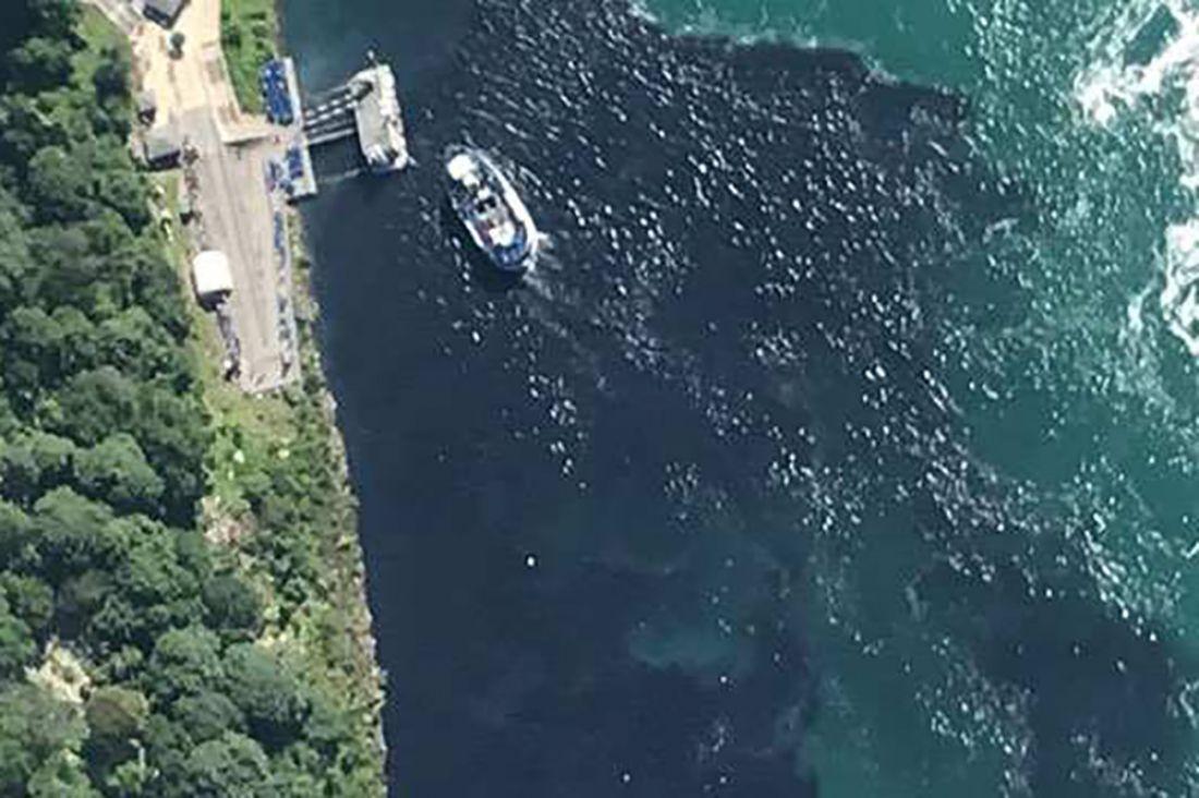 Ниагарский водопад почернел из-за некомпетентных действий сотрудников местного завода