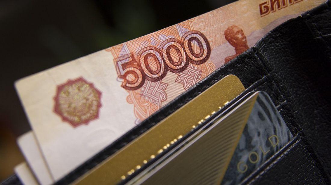 В России за чертой бедности оказались 68 депутатов