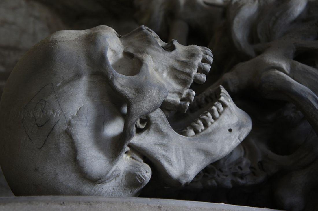 Вмосковской квартире отыскали скелет умершего 8 лет назад мужчины