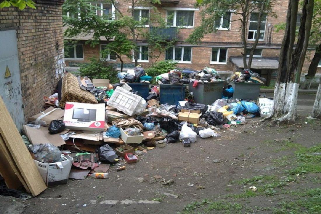 Всероссийская акция «Живи, лес»