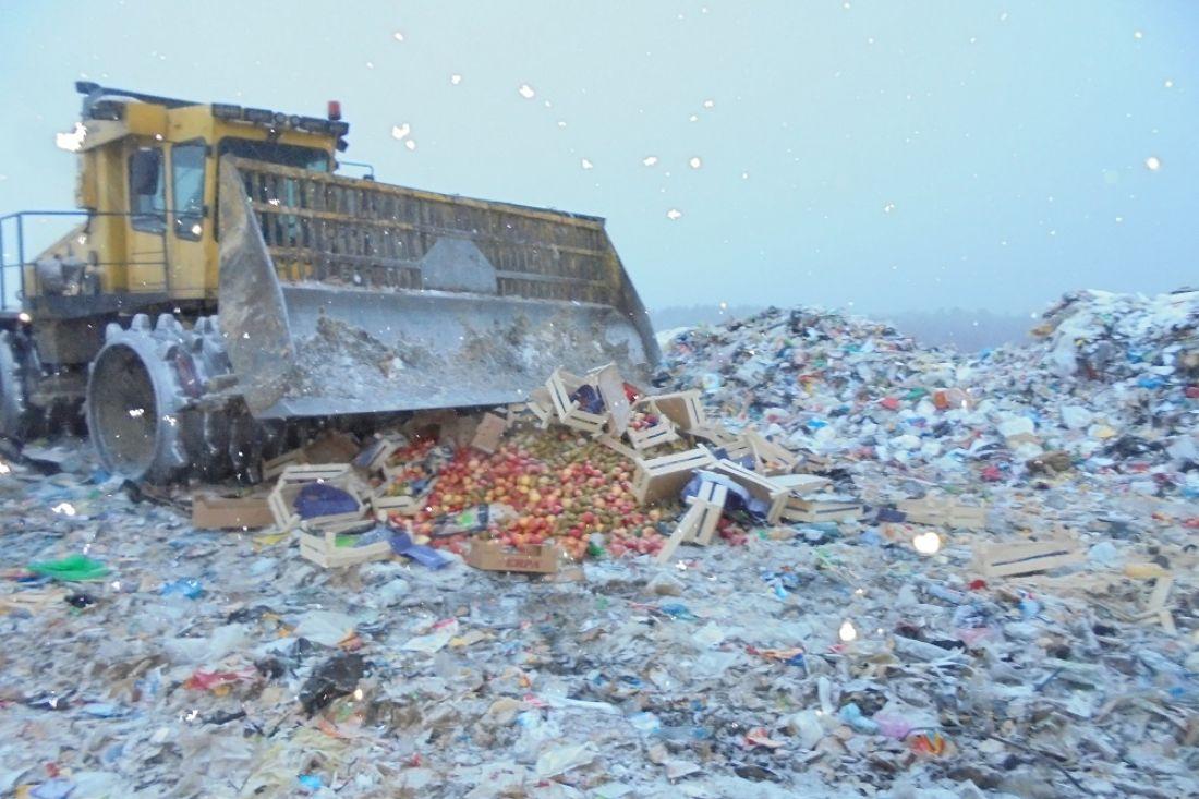 ВБашкортостане уничтожили запрещенные кввозу яблоки игруши