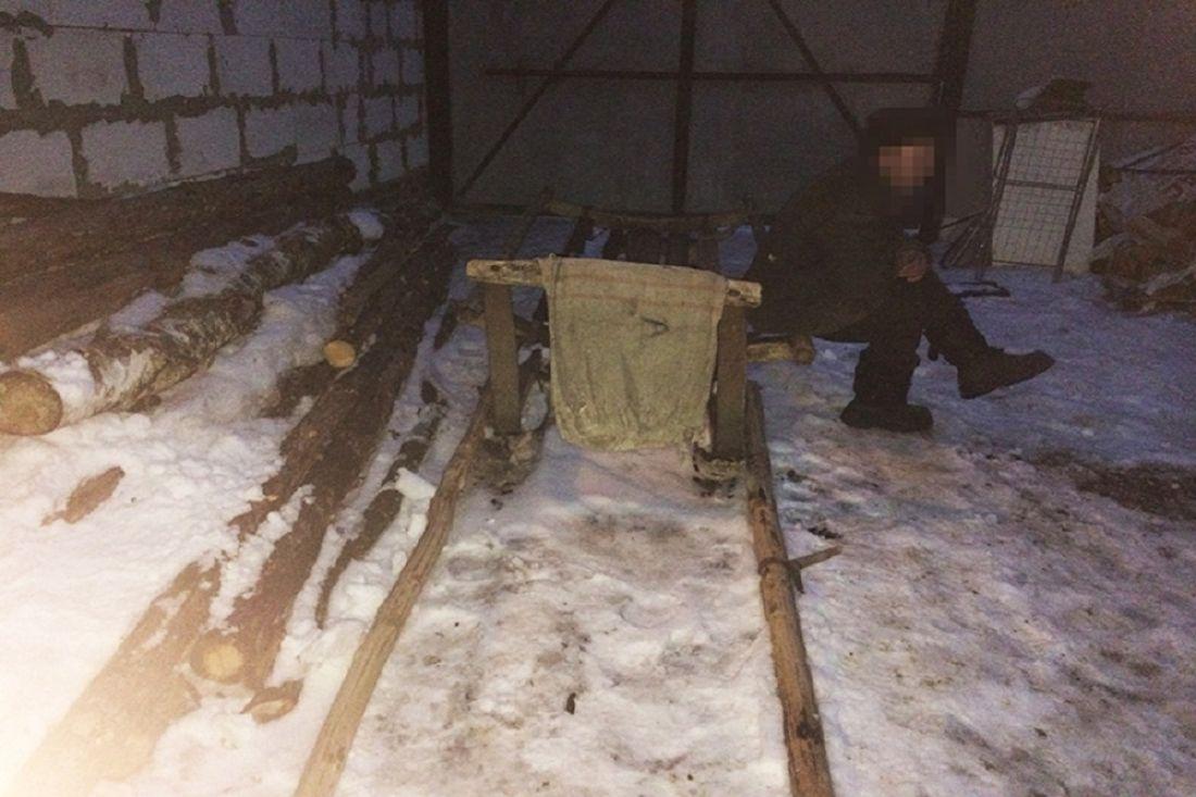 ВПензенской области мужчина нелегально нарубил дров практически на 100 тысяч руб